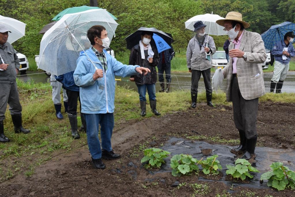 意見を交わす佐藤組合長(左)伊藤会長