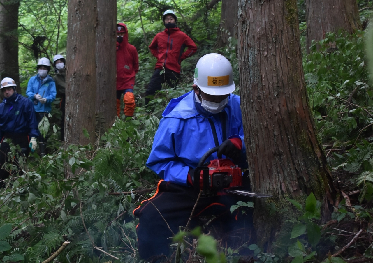 伐倒技術を学ぶ参加者