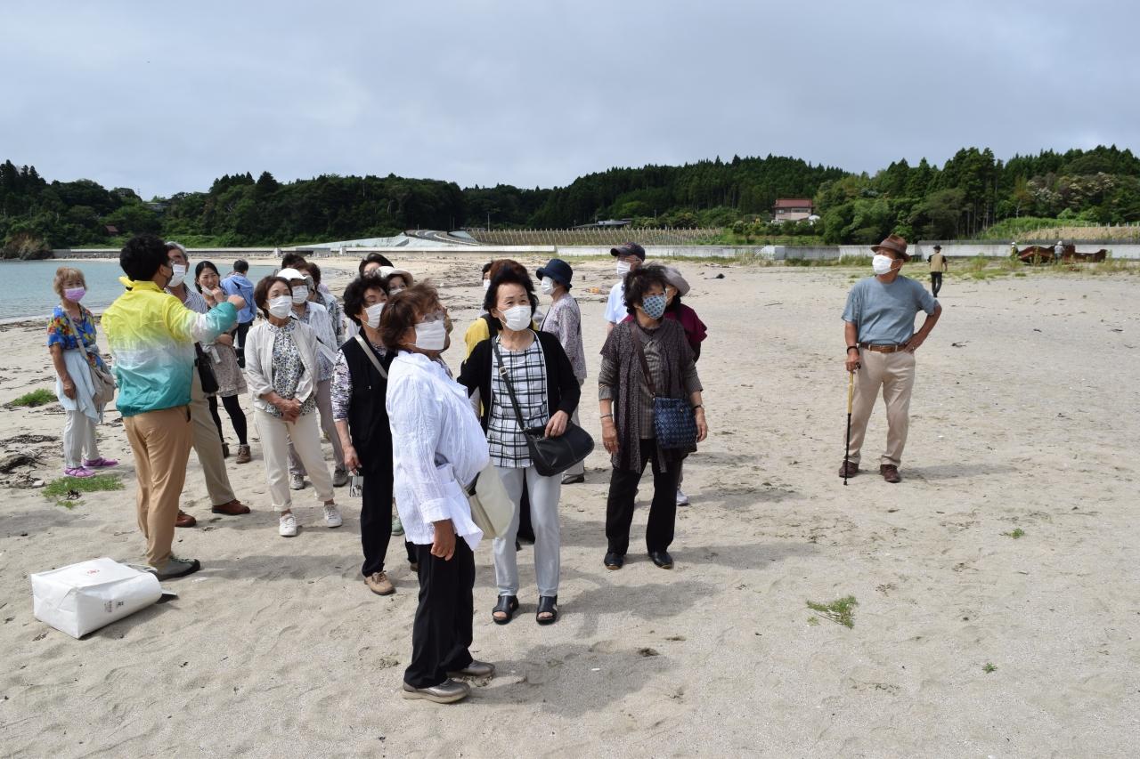 田中浜を散策するツアー客
