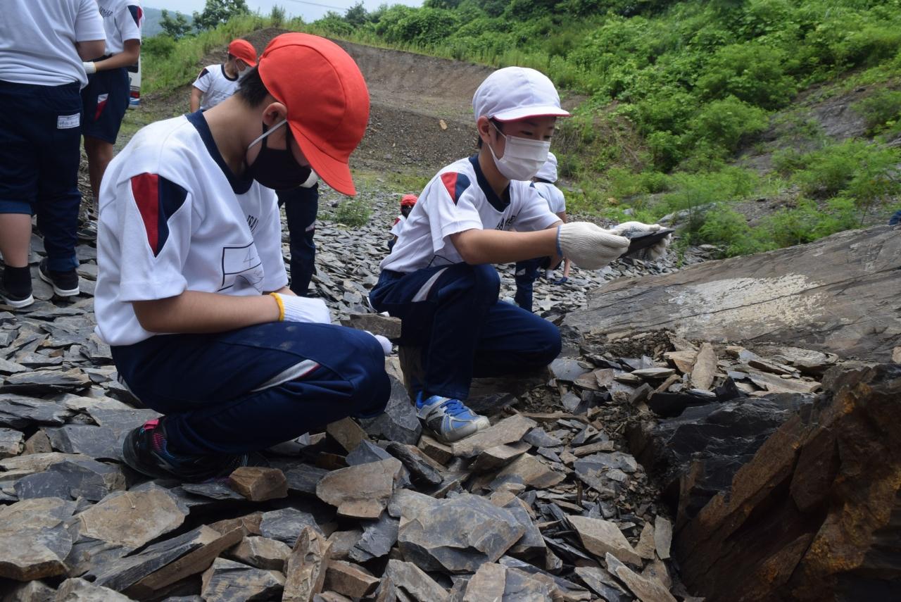 化石の発掘をする伊里前小児童