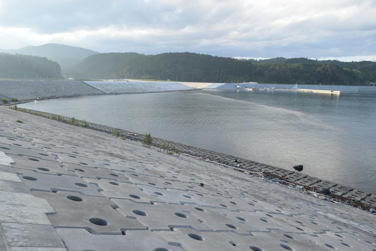 干潟再生への取り組みが進む折立海岸
