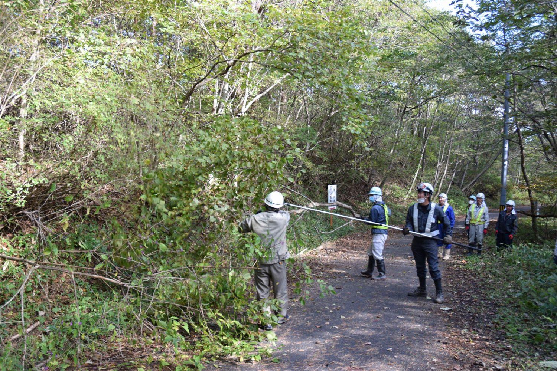 通行を妨げていた樹木を伐採
